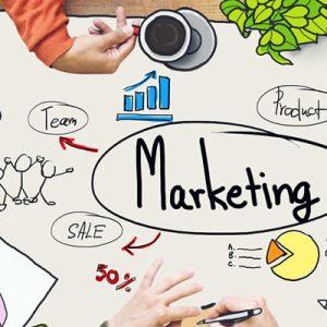 Setor QUANDO? Planejamento de Marketing digital